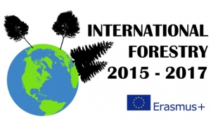 International Forestry programhét